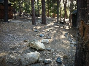 Camp Blogaway, Big Bear sunlight