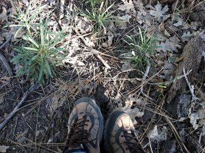 Camp Blogaway, hiking boots