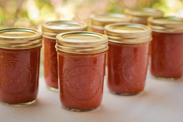Tomato Onion Jam sugarfree