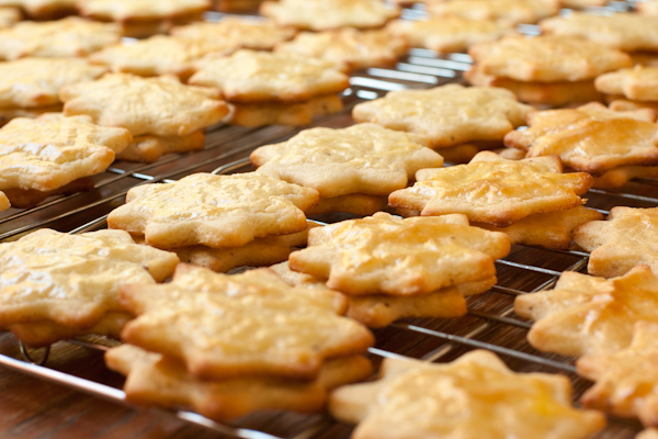German Anise Cookies