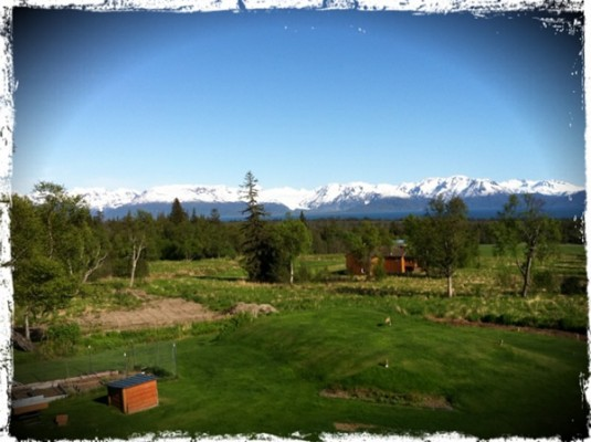 Gluten-free travel: Homer, Alaska