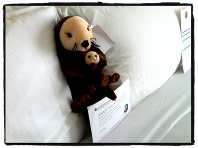 Stuffed sea otter toy on hotel bed