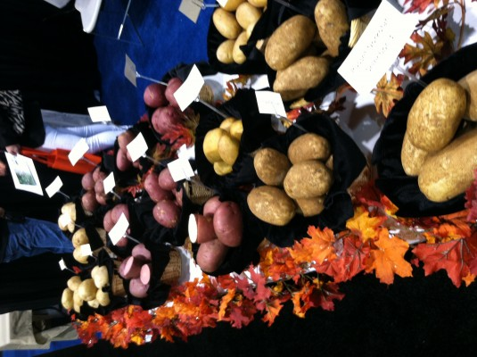 How to grow potatoes | Tips from Fresh Summit 2012