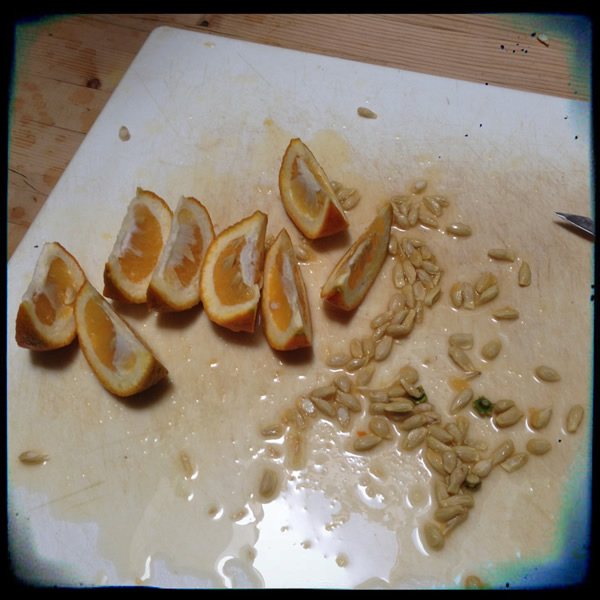 Deseeding Seville oranges for marmalade | Recipe Renovator