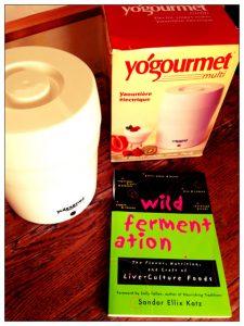 Yogourmet + Wild Fermentation giveaway on Recipe Renovator