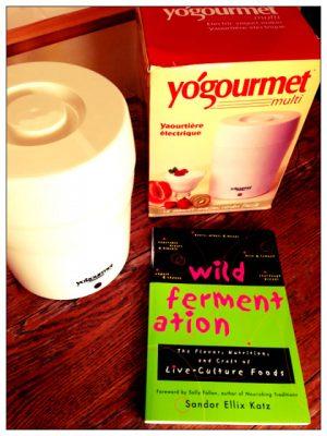 Reader sweepstakes: Wild Fermentation plus Yogourmet
