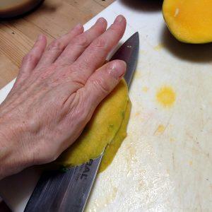 MangoSalad3