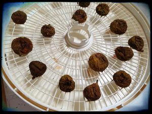 How to dry figs from Recipe Renovator