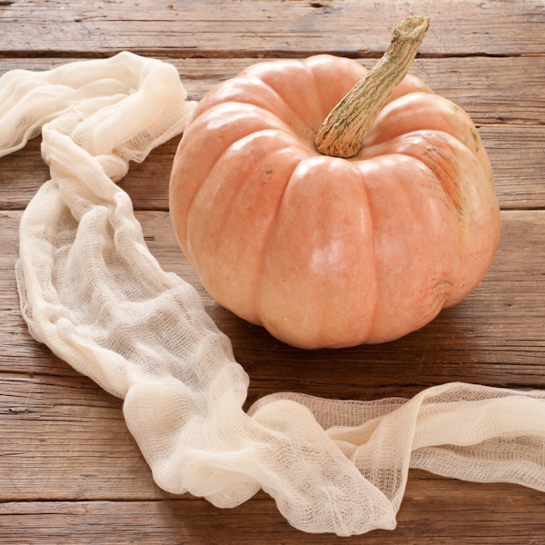 Cinderalla Pink Pumpkin by Recipe Renovator