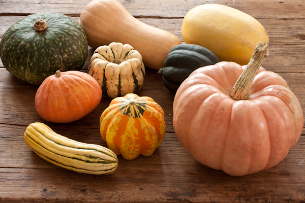 Fall Squash Assortment by Recipe Renovator